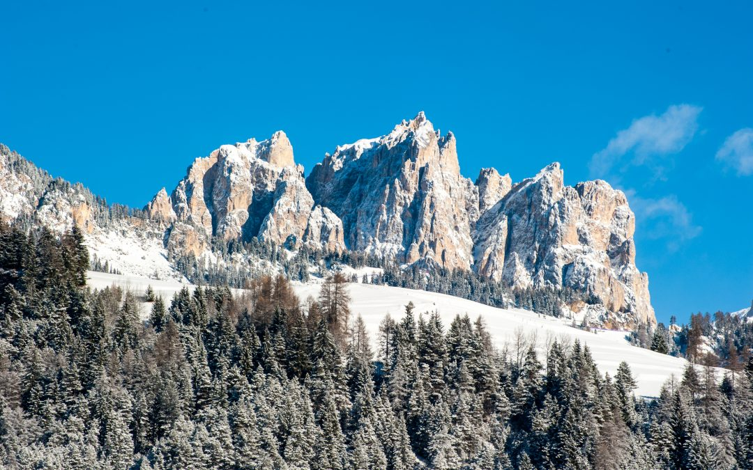 Marzo 2019, La montagna